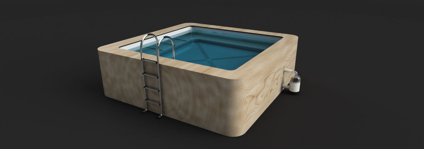 Swimming Pool|Autodesk Online Gallery