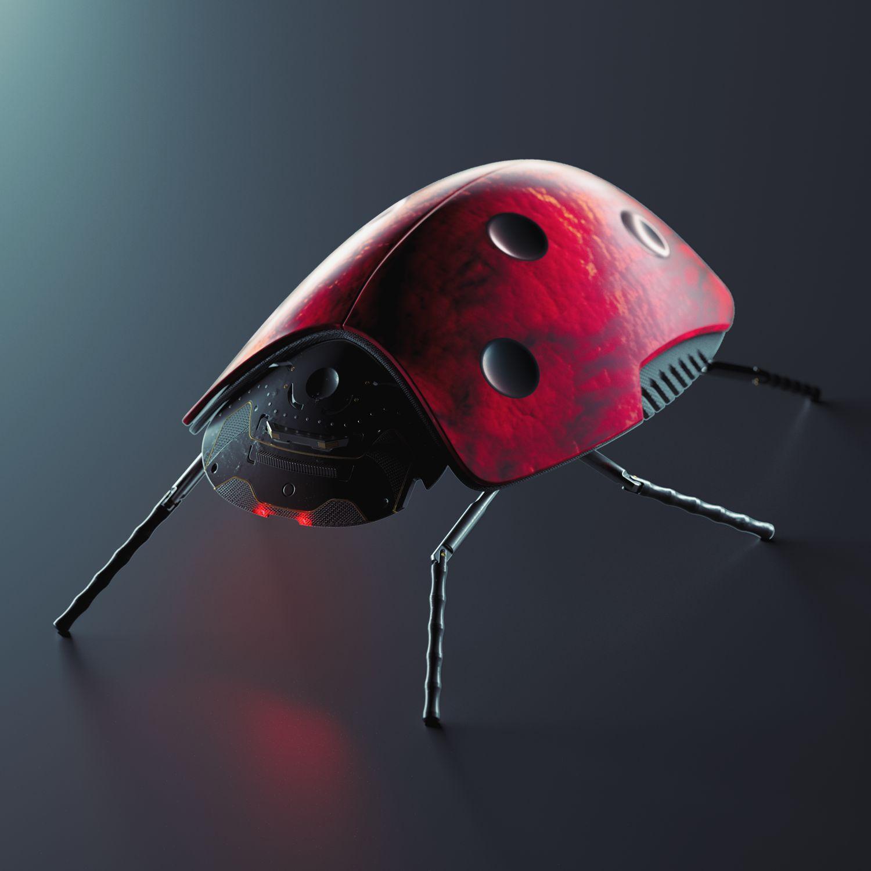 Ladybug-1-r1-web-3500-3500