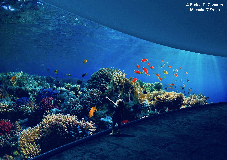 Aquarium-3500-3500